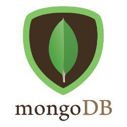 Hire MongoDB Developers